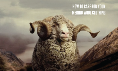 Merino Care Image